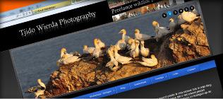 T. Wierda Photography